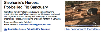 Stephanie's Heroes: Pot-bellied Pig Sanctuary. Watch the video >