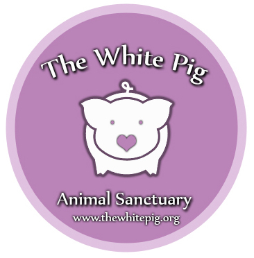 Donate to the sanctuary – The White Pig